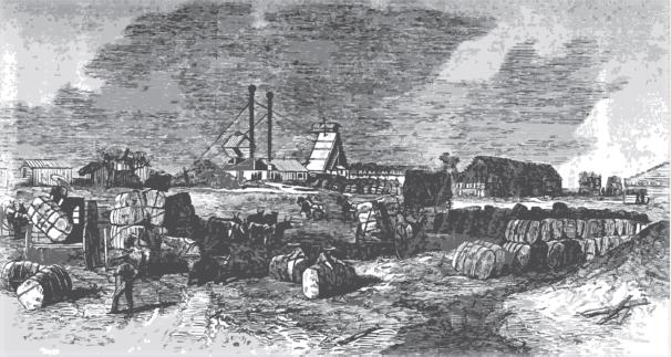 Prensando algodA?n en la frontera con MAi??xico para su transportaciA?n en pacas, 1864.