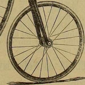 2. Bicicleta ordinaria (300x300)