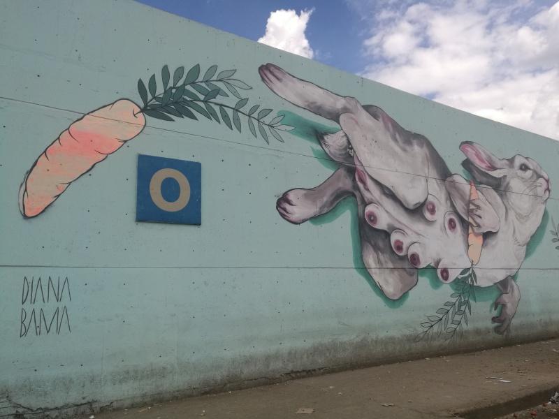 Bama, D., [sin título], 2018, Ciudad de México, colonia Central de Abastos, Iztapalapa. Fotografía de Rubí Ramírez, 2019.